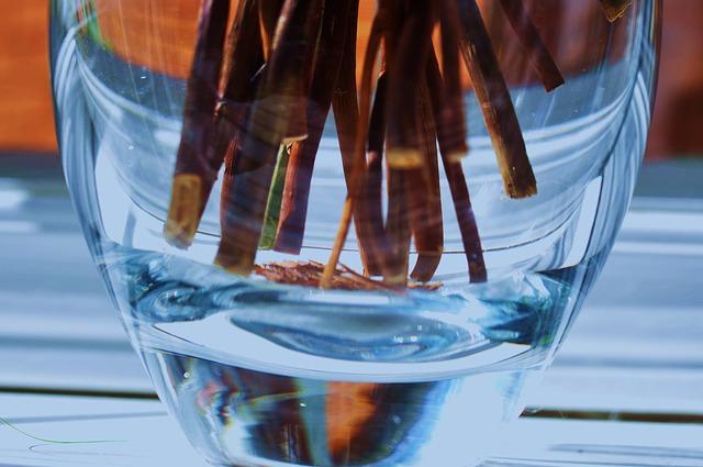 איך לבחור מטהרי מים?
